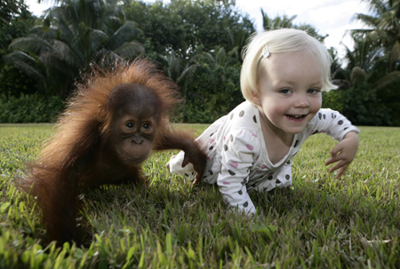 Baby And Baby Ape